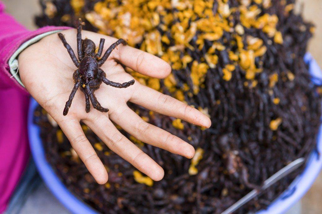 Fried Tarantula So Crispy Creepy and Crawly
