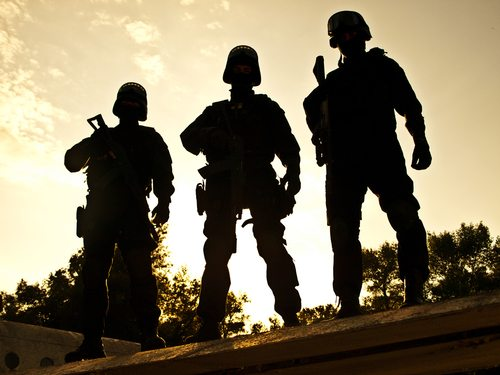 Put Armed Troops on the Border to Solve Illegal Immigration