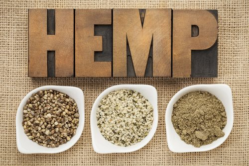 Marijuana and hemp specifically has several nutritious forms.  Its seeds and hearts are nutritious and can be used in many ways. It can also be made into protein powder.