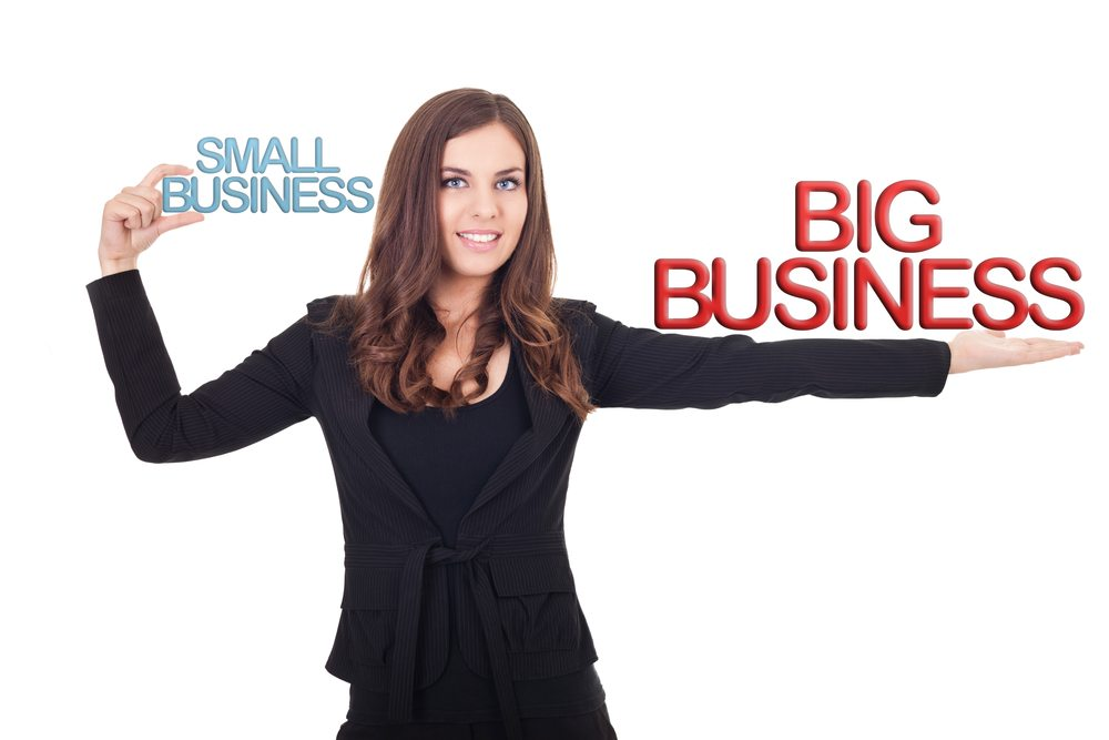 It's not big biz vs. small businesses
