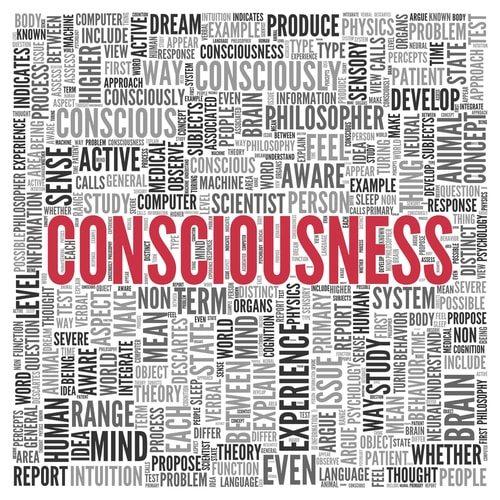 Consciousness a Paradox