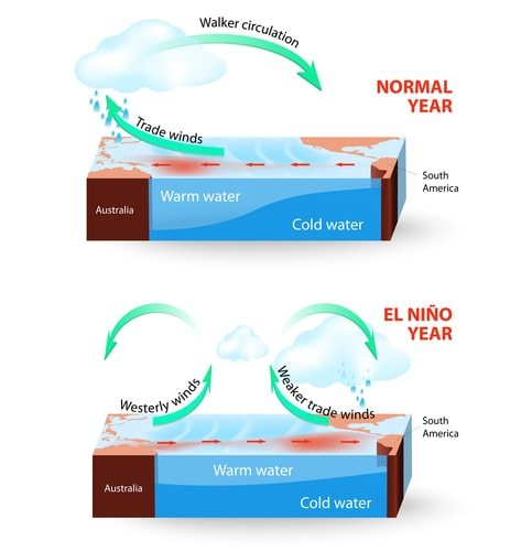 How El Nino looks compared to a normal year.