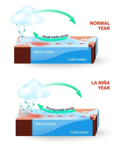 La Nina compared to a normal year.
