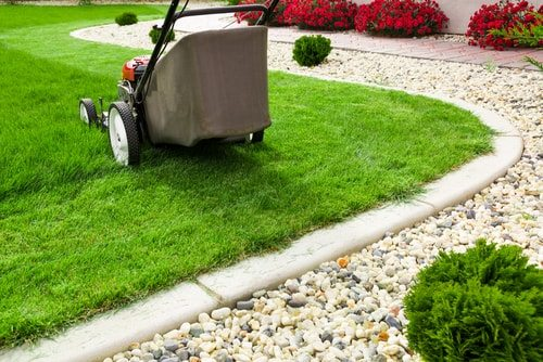 Start a landscaping or gardening business. You can do it.