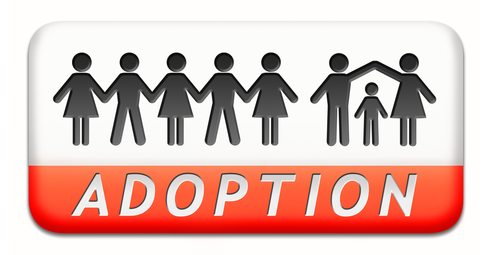 Effect on Adopting Children Marriage Equality has a Positive Effect on Adopted Kids