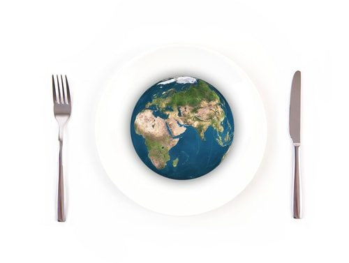 Be a vegetarian and save the world