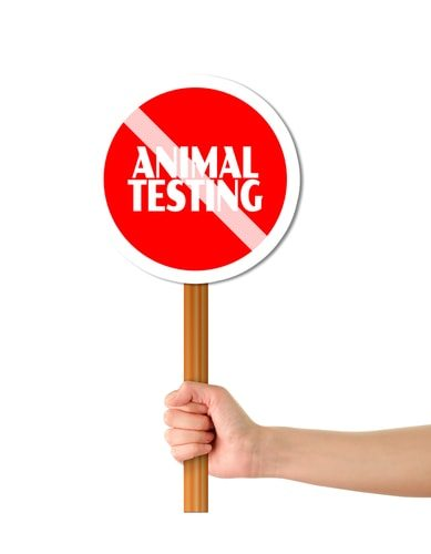 Top 10 Reasons Animal Testing Should Be Banned