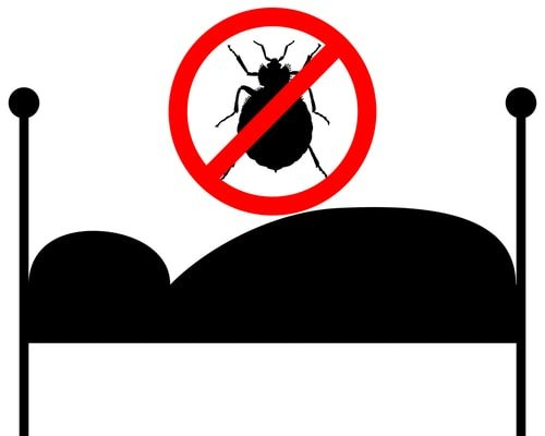 How to Get Rid of Bed Bugs in 10 Easy Steps
