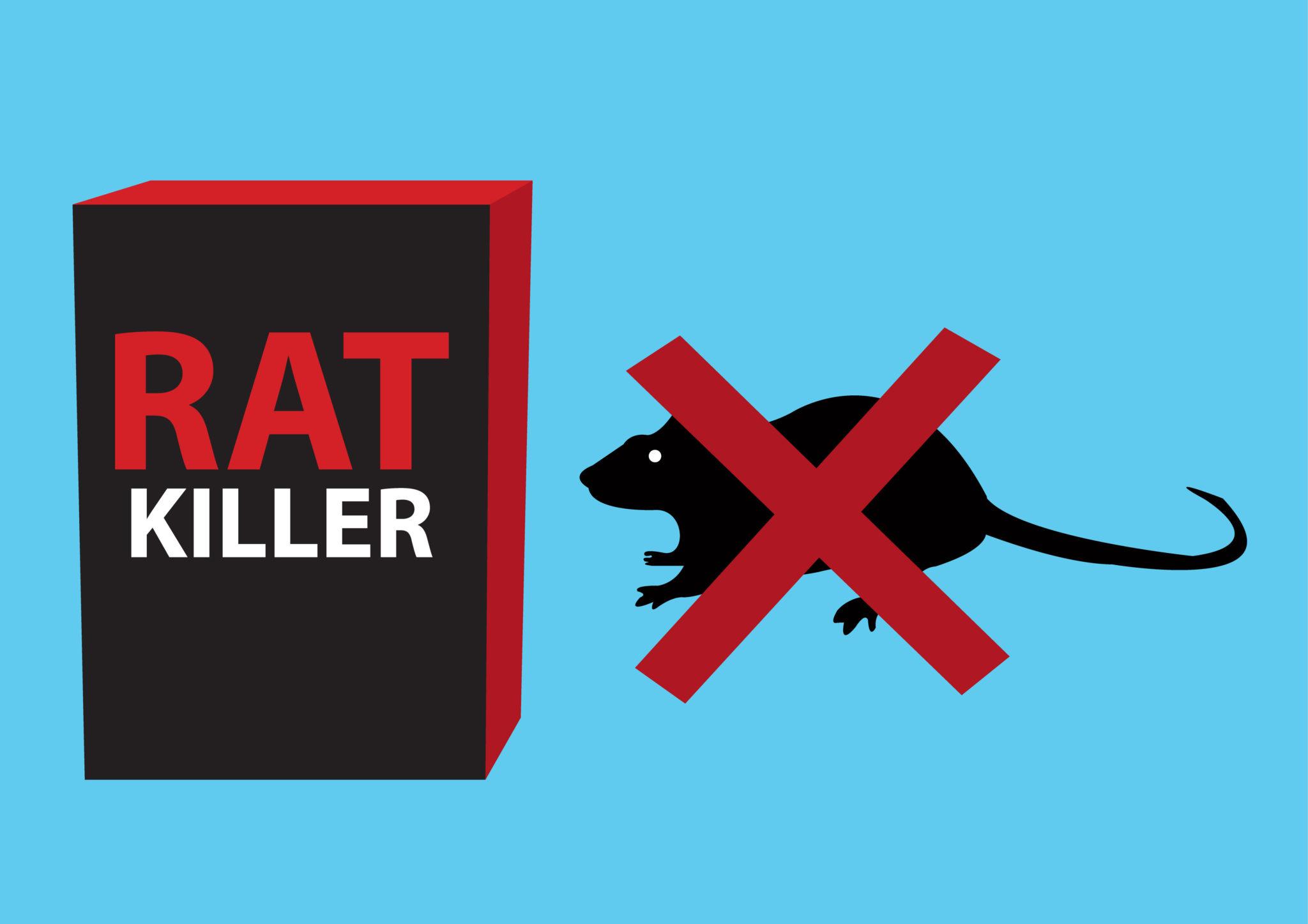 Top 10 Ways to Get Rid of Mice   ListLand.com